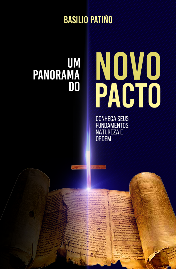 Um Panorama do Novo Pacto